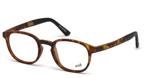 Web Eyewear WE5185 053 havanna blond