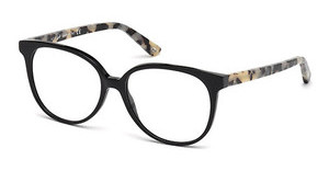 Web Eyewear WE5199 005