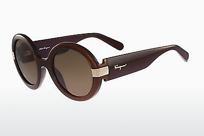선글라스 Salvatore Ferragamo SF778S 210 - 갈색
