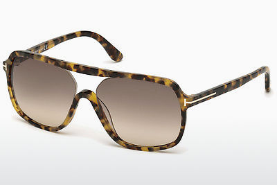 선글라스 Tom Ford Robert (FT0442 53F) - 하바나, Yellow, Blond, Brown