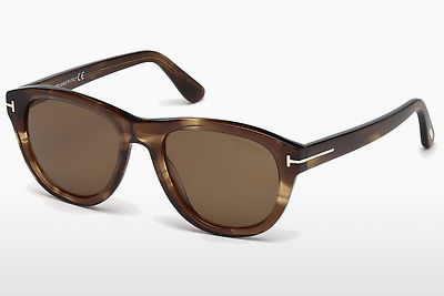 선글라스 Tom Ford Benedict (FT0520 50H) - 갈색, Dark