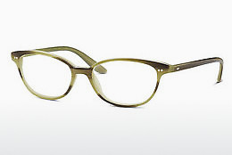 Eyewear Marc O Polo MP 503042 40