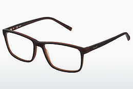 Eyewear Sting VST041 0J91 - 갈색
