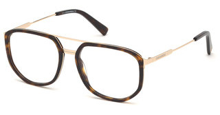 Dsquared DQ5294 056 havanna