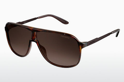선글라스 Carrera NEW SAFARI KME/J6
