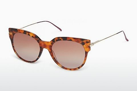 선글라스 Scotch and Soda 7005 104